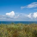 Берег Таманского залива
