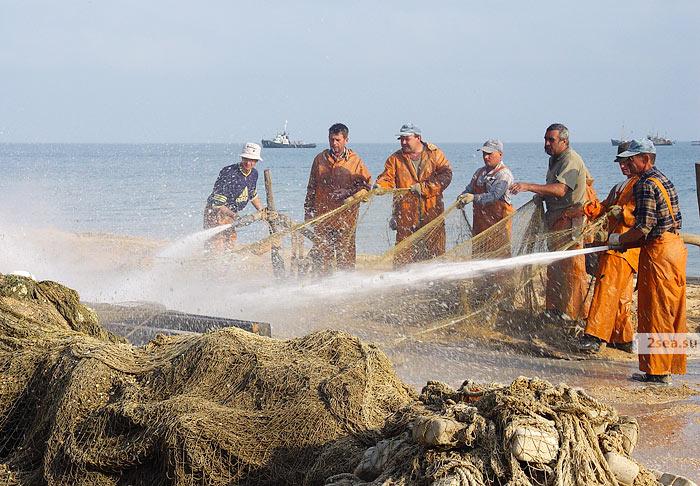 азовский рыбак ооо