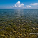 Залив Черного моря